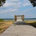 The viewing platform along the Potomac River.- Caledon State Park