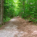 The trail is wide and gentle at the beginning.- Mount Cardigan via the Holt Trail Loop