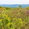 View from Pitcher Mountain.- Pitcher Mountain Fire Tower