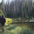 Alpine Pond Loop Trail.- Cedar Breaks National Monument