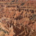 Cedar Breaks National Monument is incredible.- Cedar Breaks National Monument