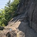 Blue blazes show the direction of travel upward and onward!- The Precipice Trail
