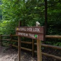 Go left from this trail junction to hike to the top of the falls.- Cummins Falls State Park Hike