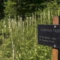 No Name Lake is a short detour off the Dawson Pass Trail.- No Name Lake Hike