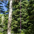 There is no food locker, just a hanging cable.- No Name Lake Campground