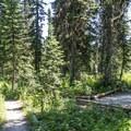 Campsite at No Name Lake.- No Name Lake Campground