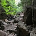 Looking up the trail, which is surprisingly smooth due to a well-placed stone staircase.- Cadillac and Dorr Mountain via the Gorge Path
