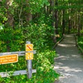 The Upper Peverly Pond Trail starts from the paved lot.- Great Bay National Wildlife Refuge
