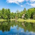 Upper Peverly Pond.- Great Bay National Wildlife Refuge