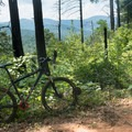 The trail runs along a ridge with great views to the west.- Jake and Bull Mountain Trail Network