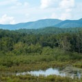 Marshy area with mountain views in the background.- Jake and Bull Mountain Trail Network