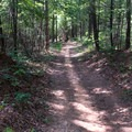 Smooth rolling trail and gentle downhills.- Jake and Bull Mountain Trail Network
