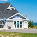 Seacoast Science Center.- Odiorne Point State Park + Seacoast Science Center