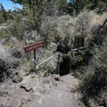 One of the lava tunnel entrances located beside the trail.- Cave Loop