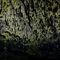 The unique coloring inside Golden Dome Cave.- Cave Loop