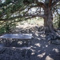 Tables along the hike provide the last shade you'll encounter, aside from inside the caves, until your return.- Cave Loop