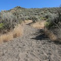 Soft dirt makes up most of the surface for the hike.- Petroglyph Point and Petroglyph Bluff Hike