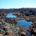 Hidden within the ʻaʻā lava fields you can find smaller ponds.- Akahu Kaimu Bay / Lone Palm Pond