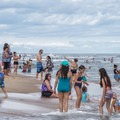 People playing in the water along the sandy shore.- Ocean City