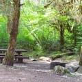 Kiahanie Campground.- Kiahanie Campground