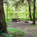 Kiahanie Campground in the Willamette National Forest.- Kiahanie Campground