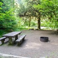 Campsite along the North Fork of the Middle Fork Willamette River.- Kiahanie Campground