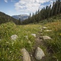 Through the meadow over Timber Gap.- Mineral King Loop: Timber Gap to Sawtooth Gap