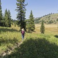Once atop the ascent, you reach Bailey Meadows.- Arizona Creek Trail to Bailey Meadows