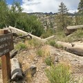 Keep left for Fish Creek.- Iva Bell Hot Springs via Fish Creek Trail