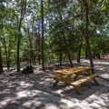 A campsite under some shade.- Cape Henlopen State Park Campground