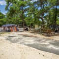 A vacant camp site.- Cape Henlopen State Park Campground