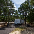 An RV parked under the shade of a campsite.- Cape Henlopen State Park Campground