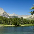 Swiftcurrent Lake.- Swiftcurrent Lake Loop Hike