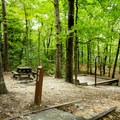 One of many lakeside tent sites.- Devils Fork State Park Campground
