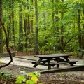 Each lot is level and includes a grill and picnic table.- Devils Fork State Park Campground