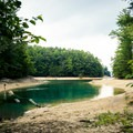 Bear Cove is a great swimming hole.- Bear Cove Trail
