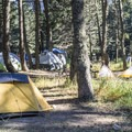 Tent camping in Rising Sun.- Rising Sun Campground