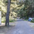 The campground has a narrow loop road.- Rising Sun Campground