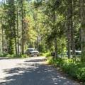 Many Glacier Campground road.- Many Glacier Campground