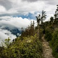 Take a trip out to Myrtle Point near the lodge and you might just find that you're walking in the clouds.- LeConte Lodge