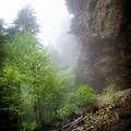 A rainy morning on Alum Cave headed to LeConte is a foggy and magical place to be!- LeConte Lodge