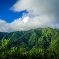 Mount Olympus and the Ko'olau Mountains.- Pu'u Pia