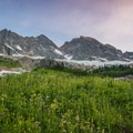 After a few hundred feet of pack-grabbing alder, you're left with another few hundred feet through a beautiful alpine meadow.- Mount Goode: Northeast Buttress