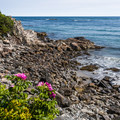 There are plenty of beautiful views of the ocean along the hike.- Cliff Walk