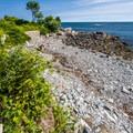 The path runs along the coast.- Cliff Walk