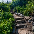 There are few tricky places where the path becomes a little hazardous.- Cliff Walk