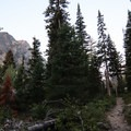 Stay loud, have your bear spray ready, and keep your head on a swivel as you hike around Leigh Lake and up into Paintbrush Canyon. - Paintbrush Canyon to Cascade Canyon Loop
