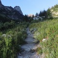 Your first wide open view of Paintbrush Canyon as you climb up out of the first batch of trees into a clearing.- Paintbrush Canyon to Cascade Canyon Loop