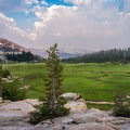 The sites up on the granite slabs have the best view of the meadow.- Sunrise Lakes