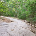 Some rock slab along the trail.- Welch-Dickey Loop